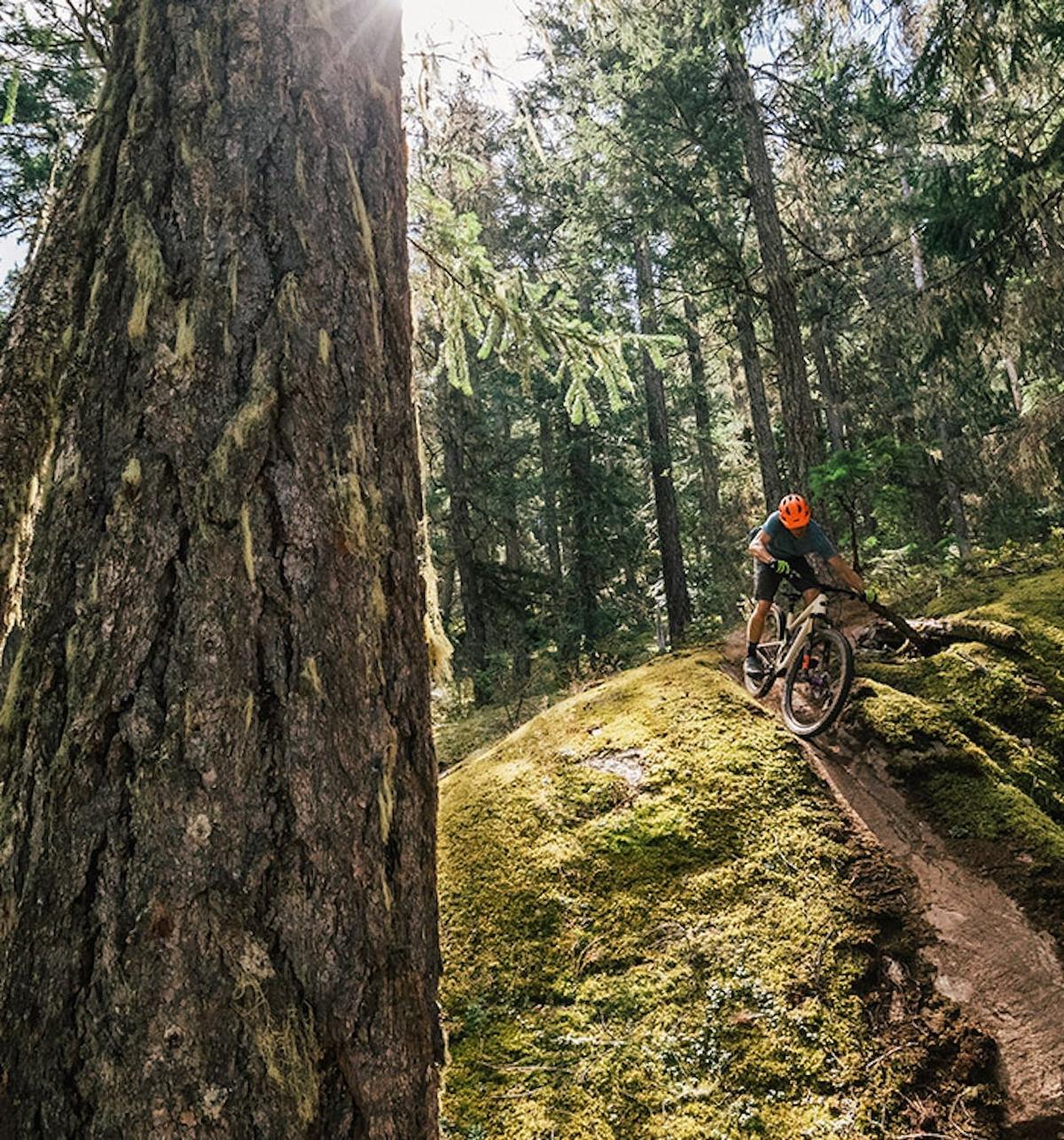 Riding the Santa Cruz Tallboy down a rocky slab in the forest