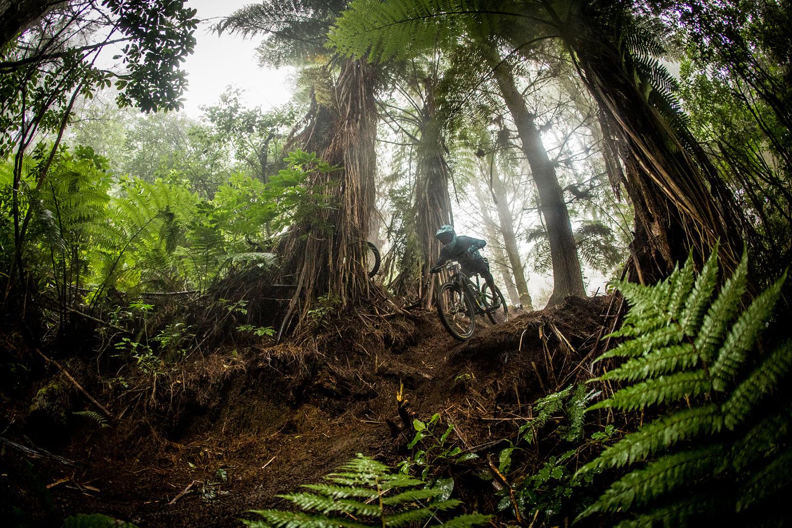 Santa Cruz Bicycles Racers at the 2017 Rotorua Enduro World Series