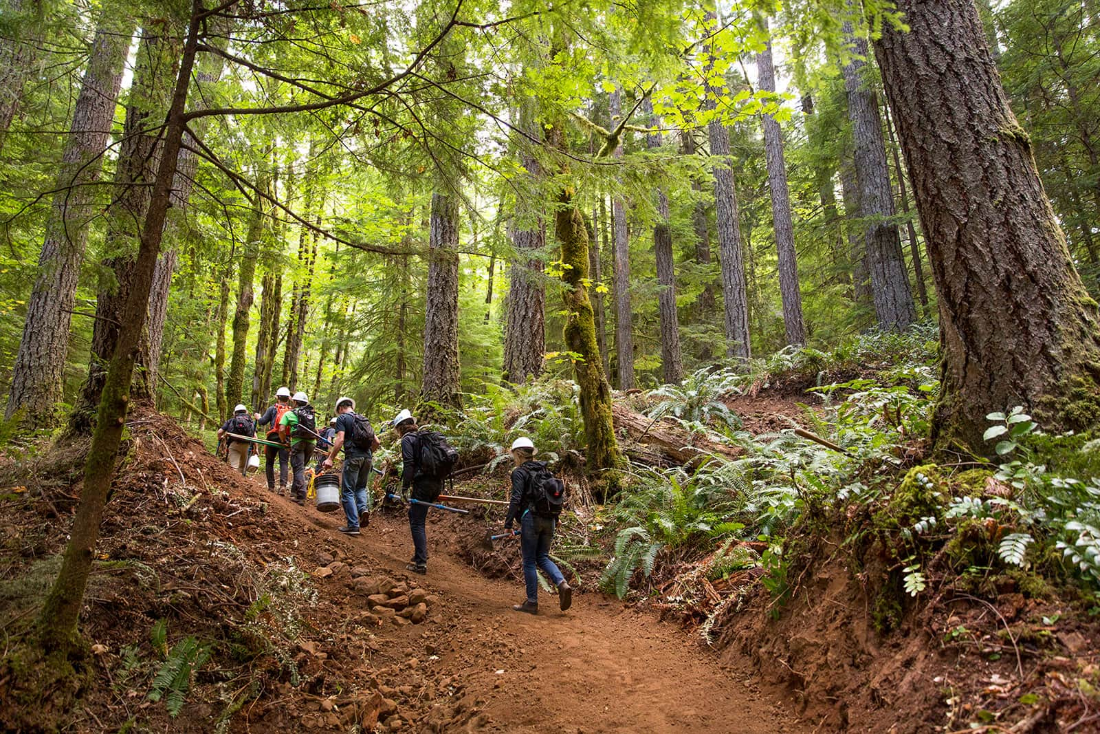 Factory Racing Digs Oakridge with Trans-Cascadia; Teams Up On Ten For Trails