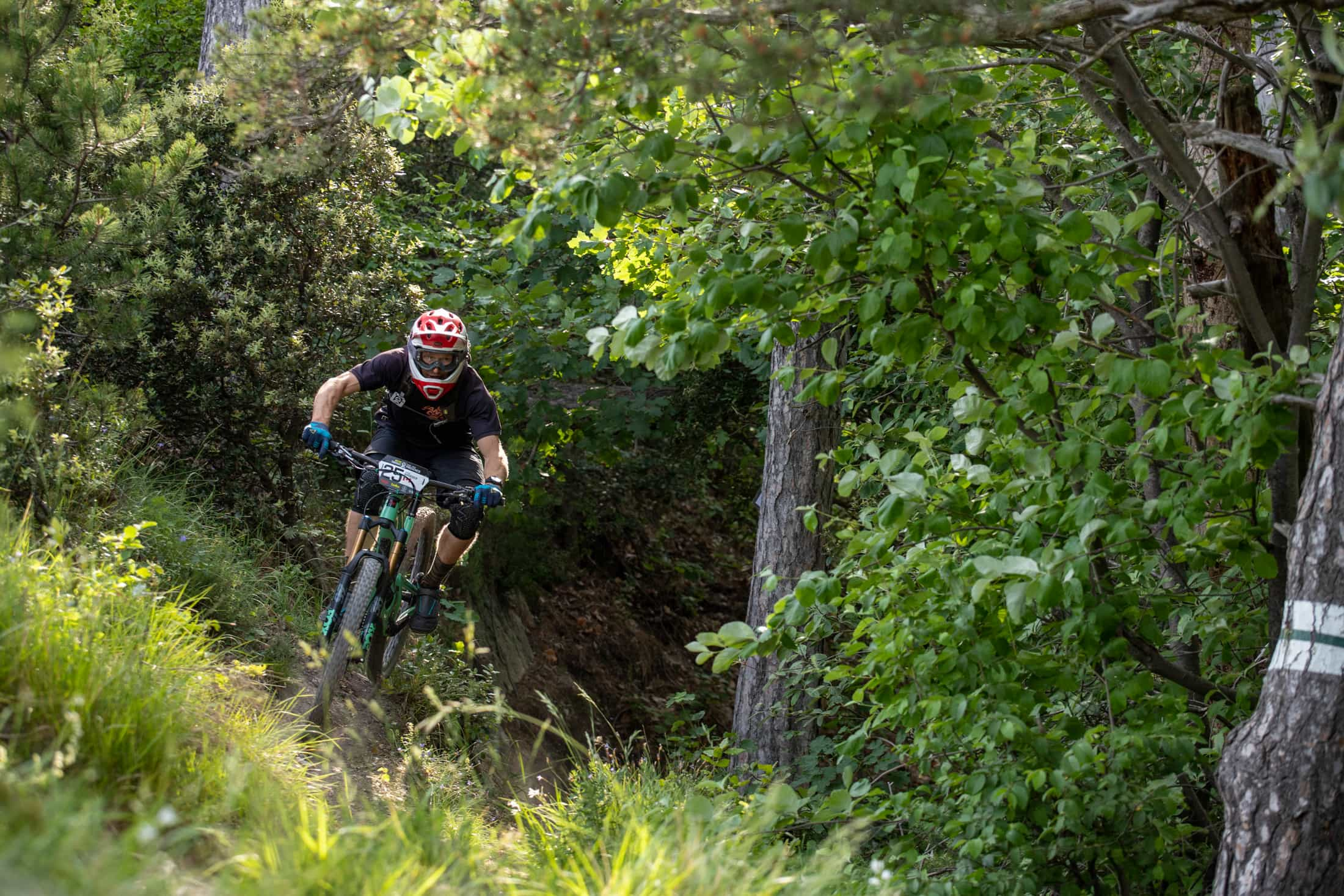 Santa Cruz Bicycles - Day 4 of the 2019 Trans-Provence